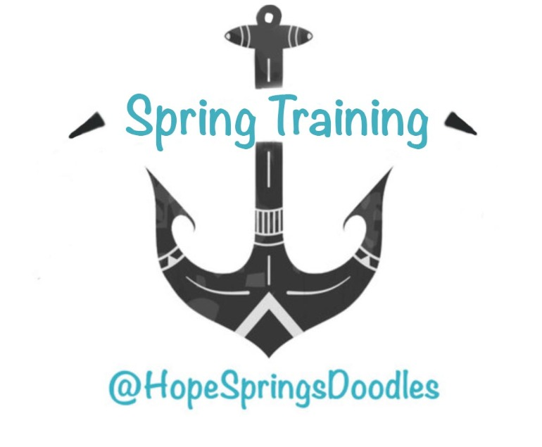 Hope Springs Doodles Puppy Training